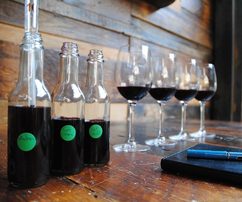 Wine Blending Trials