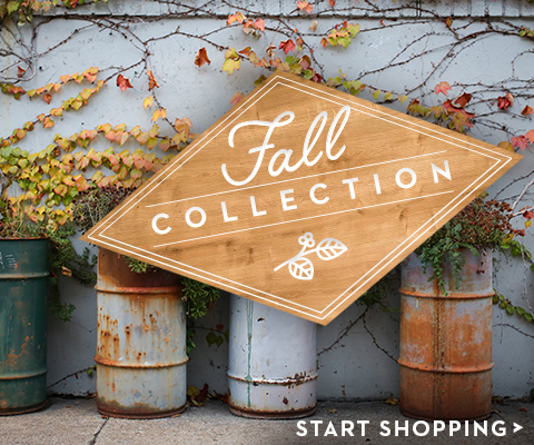 Fall Wine Collection